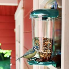 """Кормушка для птиц """"Столовая"""" на окно, с присоской"""