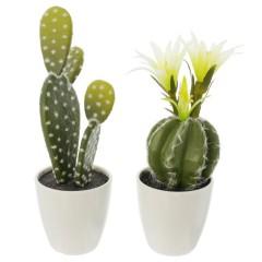 """Декоративные растения """"Кактусы"""" 2 шт."""