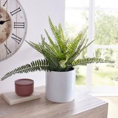 """Декоративное растение """"Папоротник"""", В 35 см"""