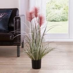 """Декоративное растение """"Розовые колоски"""" высота 80 см"""