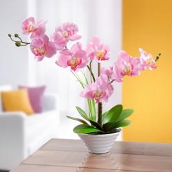 """Декоративное растение """"Орхидея"""" в горшке"""
