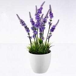 """Декоративное растение """"Лаванда"""" В 30 см"""