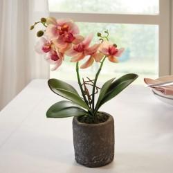 """Декоративное растение """"Орхидея"""", высота 32 см"""
