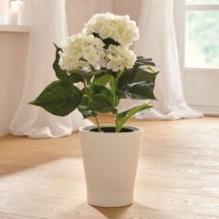 """Декоративное растение """"Гортензия"""" высота 50 см"""