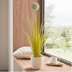 """Декоративное растение """"Аллиум"""", высота 70 см"""